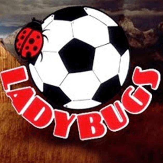 Ladybugs Soccer Logo