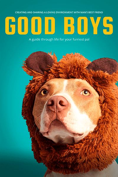Dog Care Guide Book Cover Maker