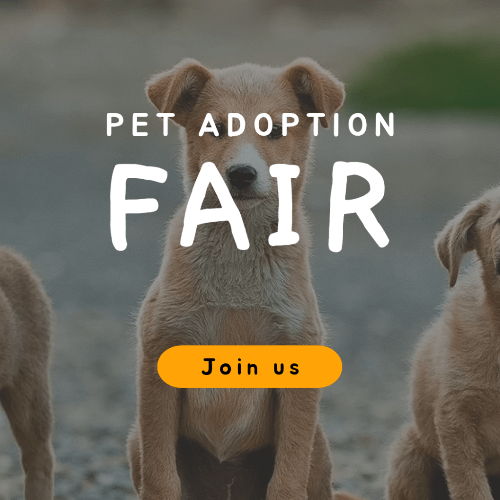 Online Banner Generator For A Pet Adoption Fair