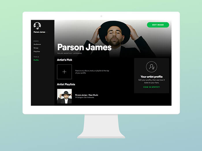 Profile Tools In Spotify For Artists