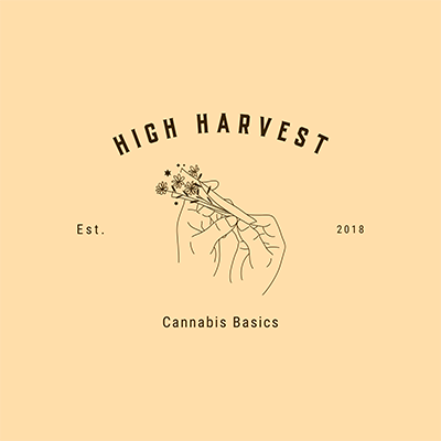 Cannabis Store Logo Maker Featuring A Minimalist Outline Drawing