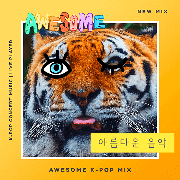 Amazing K Pop Cd Cover Template