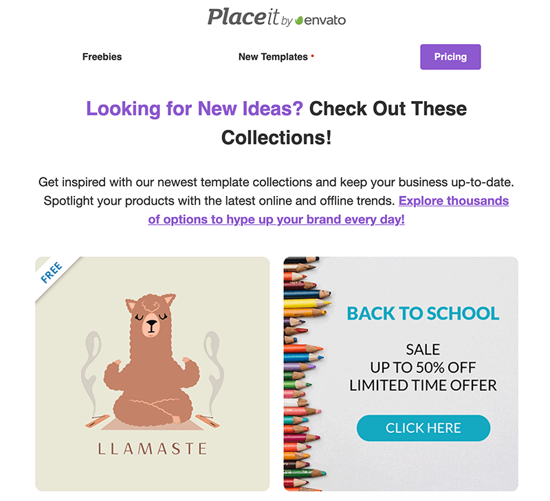 Email Campaign Placeit